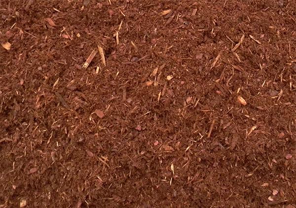 Image result for hemlock mulch pics
