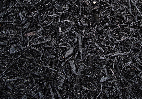 Black Bark Mulch